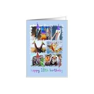 Happy 18th Birthday Zoo Animals Card: Toys & Games