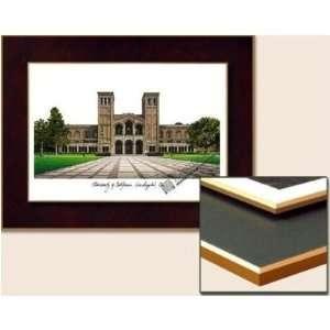 University of California, Los Angeles Collegiate Laminated