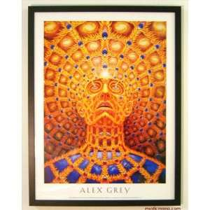 Oversoul By Alex Grey Framed Poster Edition 19x25:  Home