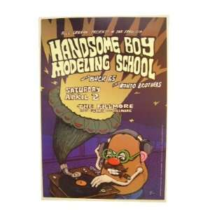 Handsome Boy Modeling School Poster Handbill Fillmore