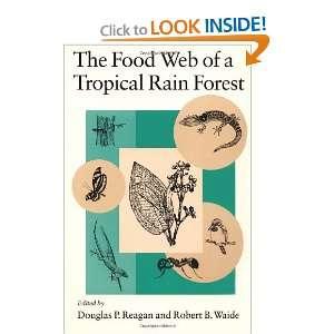 Rain Forest (9780226706009): Douglas P. Reagan, Robert B. Waide: Books