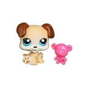 Littlest Pet Shop Puppy with Teddy Bear #143: Toys & Games