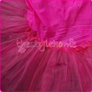 Girls Fairy Party Leotard Ballet Costume Tutu Dress Skirt 4 5T