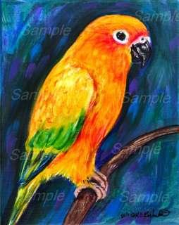 SUN CONURE GICLEE Bird Painting Pet PARROT Kasheta ART