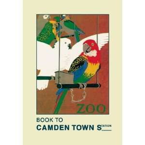 London Zoo Exotic Birds 20X30 Canvas