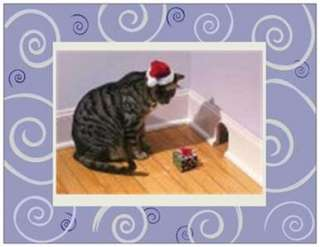 20 CHRISTMAS Santa CAT Mouse PRESENT Greeting Post Cards PRINTED US OR