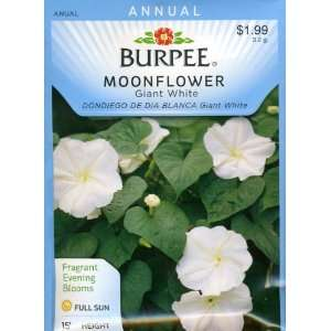 Burpee 44081 Moonflower Giant White Seed Packet Patio