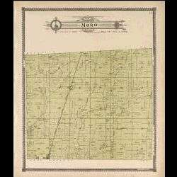 of Madison County Illinois   IL Plat Book Directory Maps Book on CD