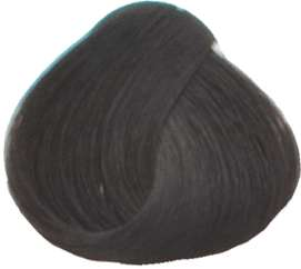 Goldwell Topchic Professional Hair Color (2.1 oz. tube)  4N