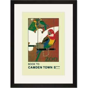 /Matted Print 17x23, The London Zoo Exotic Birds Home & Kitchen