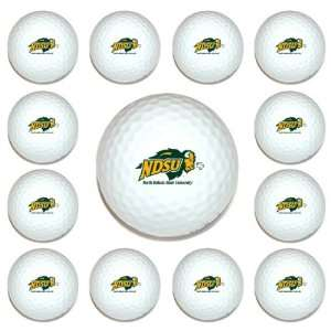 North Dakota State Bison Team Logo Golf Ball Dozen Pack