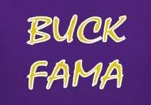 LSU TIGERS BUCK FAMA T SHIRT sizes Sm large 3XL alabama