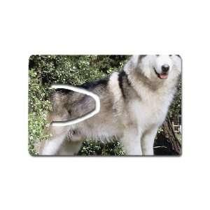 Siberian husky dog Bookmark Great Unique Gift Idea