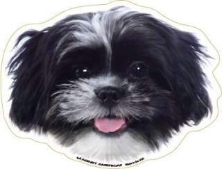Black and White Shih Tzu Dog Head Car Magnet