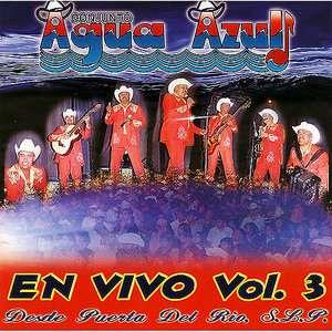 En Vivo, Vol.3 Desde Puerta Del Rio, S.L.P., Conjunto