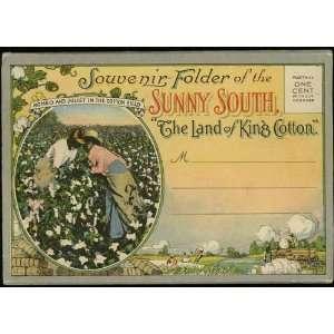 The Land of King Cotton Sunny South (1920s Souvenir Postcard Folder