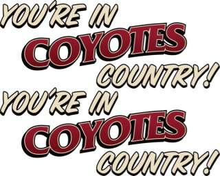NHL Phoenix Coyotes Iron On Transfer #7