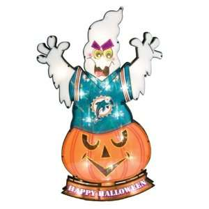 Miami Dolphins Lighted Lawn Halloween Decoration: Sports