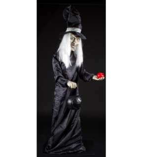Halloween Scary Witch 5 Animatronic Prop Decoration