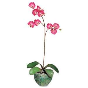 Baumgartens Artificial Fuchsia Orchids in a Green/Brown