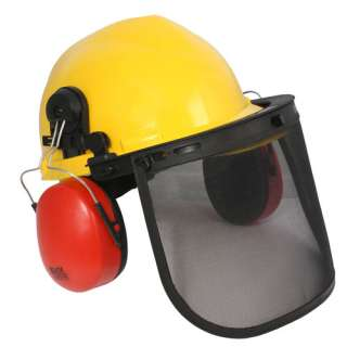 RADIANS LOGGERS COMBO RATCHET suspension hard hat, cap mount earmuff