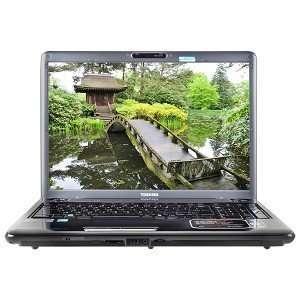 Toshiba Satellite P305 S8910 Core 2 Duo P7450 2.13GHz 4GB