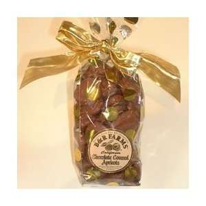 Farms Chocolate Covered Dried Apricots  Grocery