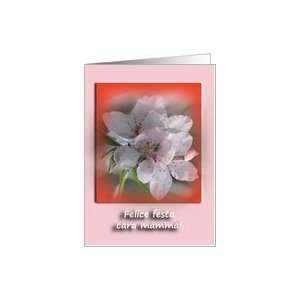 Cara Mamma   Italian Mothers Day Greeting Card Greeting Card Card