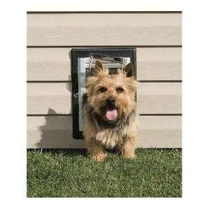 PetSafe Aluminum Wall Dog Door, Large